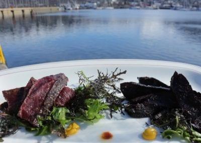 Sel og hval i Tromsø